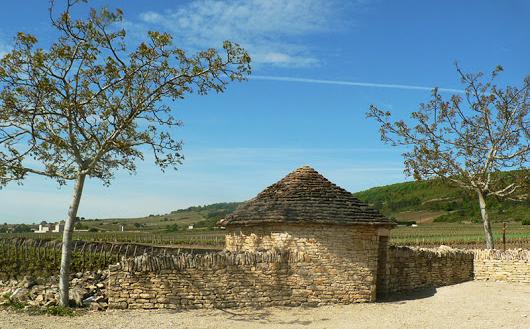 Een cadole in Chassagne-Montrachet (Wijn uit Bourgogne)