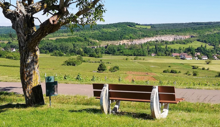 La Vallée des Vaux (Wijn uit Bourgogne)