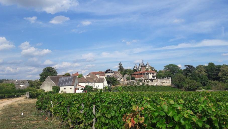 Domaine de la Monette (Wijn uit Bourgogne)