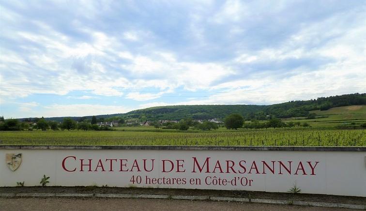 Toegang tot Château de Marsannay (Wijn uit Bourgogne)