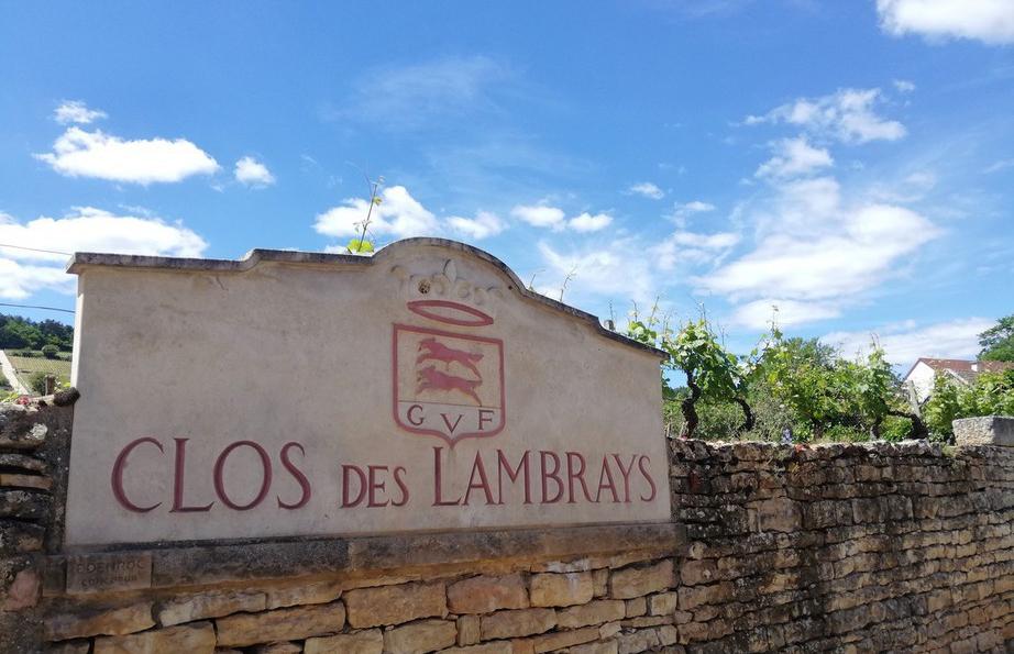 Clos des Lambrays in Morey-Saint-Denis (Wijn uit Bourgogne)