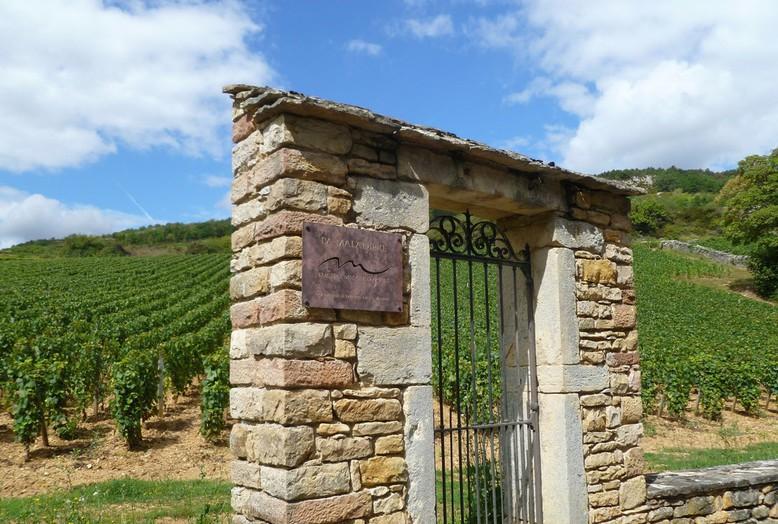 La Maladière in Santenay (Wijn uit Bourgogne)