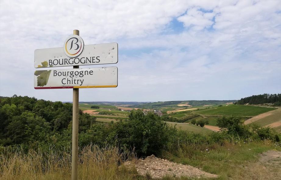 Bourgogne Chitry (Wijn uit Bourgogne)