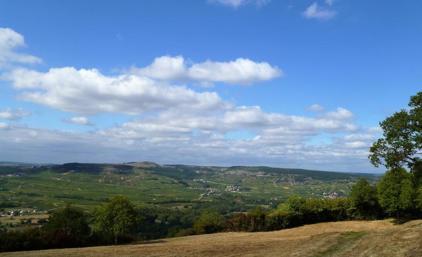 Maranges (Wijn uit Bourgogne)
