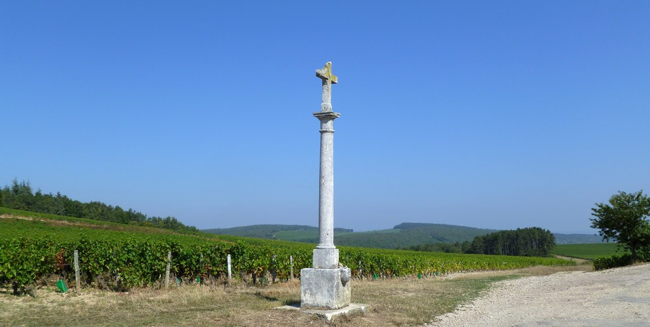 Côte Chalonnaise (Wijn uit Bourgogne)