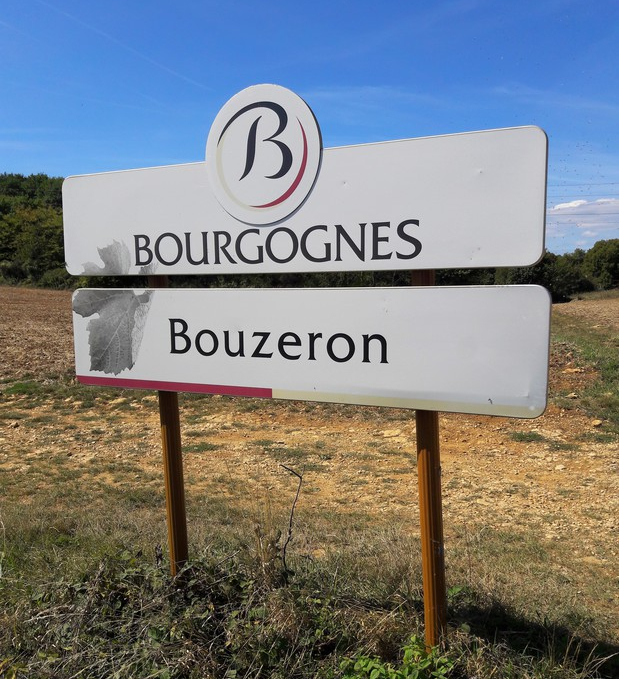 Bouzeron (Wijn uit Bourgogne)