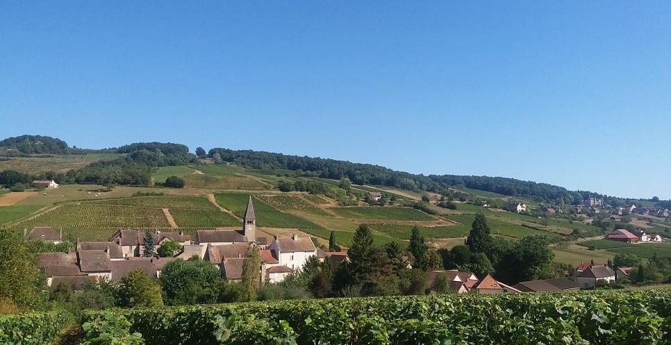 Jambles (Wijn uit Bourgogne)