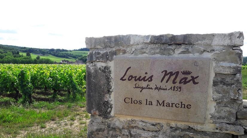 Clos la Marche in Mercurey (Wijn uit Bourgogne)
