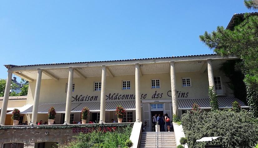 La Maison Mâconnaise des Vins (Wijn uit Bourgogne)