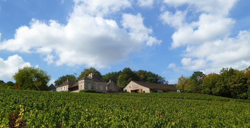 Domaine Meix Foulot in Mercurey (Wijn uit Bourgogne)