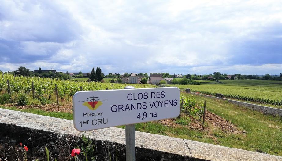 Domaine Jeannin-Naltet in Mercurey (Wijn uit Bourgogne)